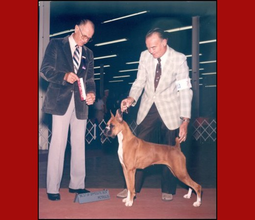 BOS/WB -- SE Arkansas Kennel Club - 1984