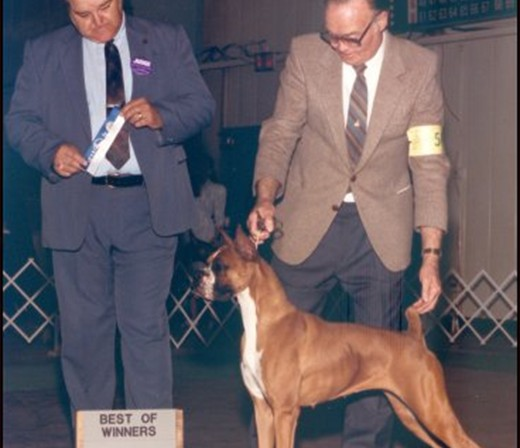 Best of Winners/ Winners Bitch -- Belle City Kennel Club - 1989